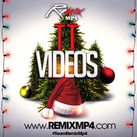 Serafin Animals Holiday Bootleg [TT Videos]