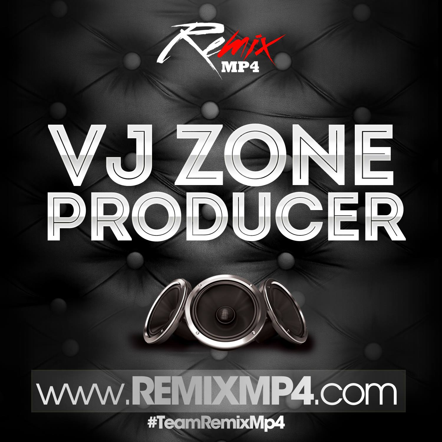 Remix [Vj Zone Producer]